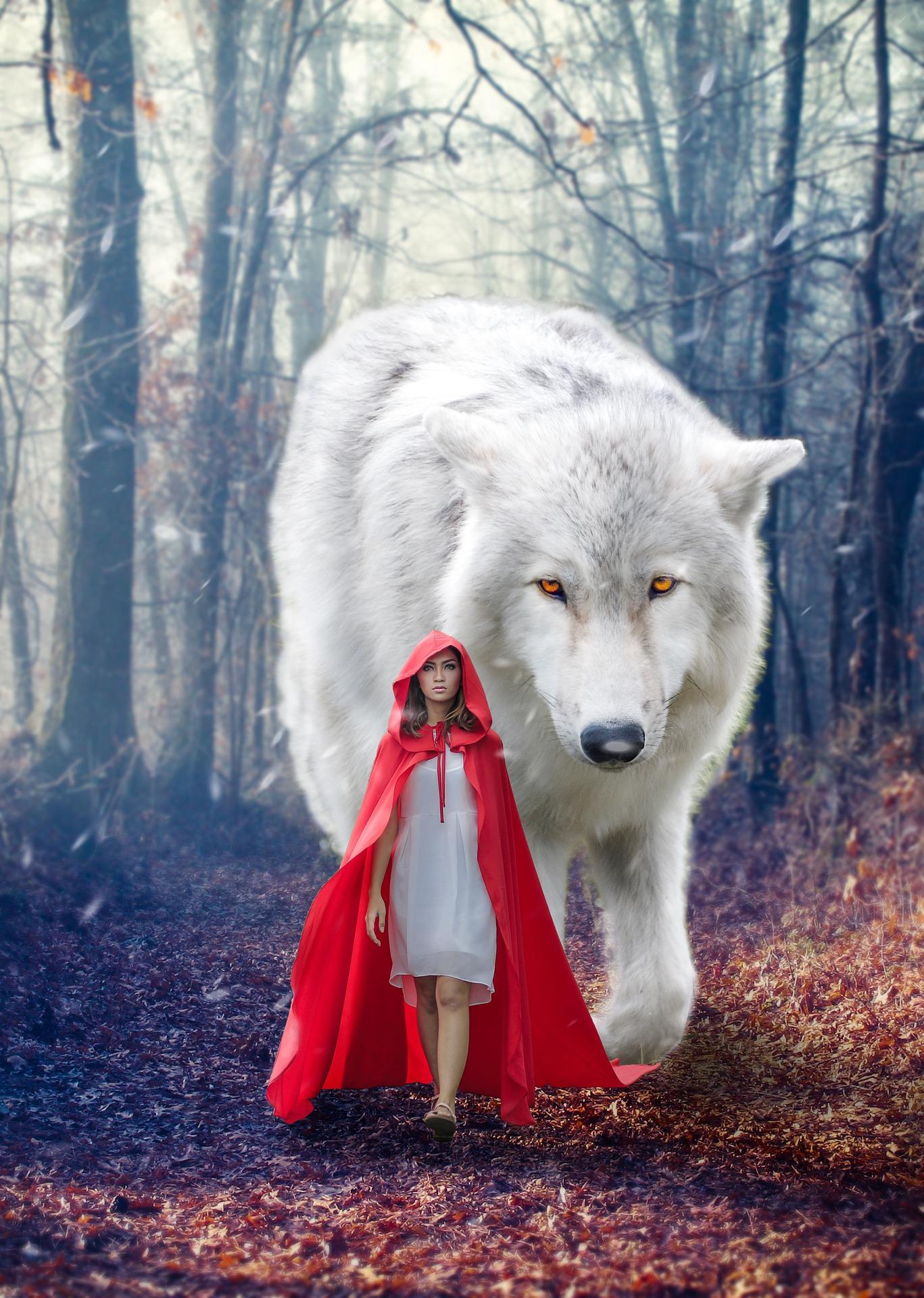 Wolf 5161290 1920